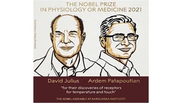 Nobel Y sinh 2021 vinh danh những phát hiện về các thụ thể nhiệt và xúc giác