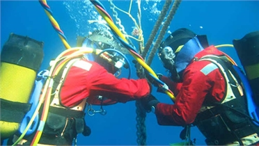 Đã khôi phục 100% dung lượng trên tuyến cáp biển AAG