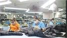 Huyện Lạng Giang thu ngân sách đạt 178% kế hoạch