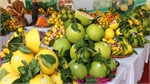 Luc Ngan supports consumption of orange, pomelo and signature products