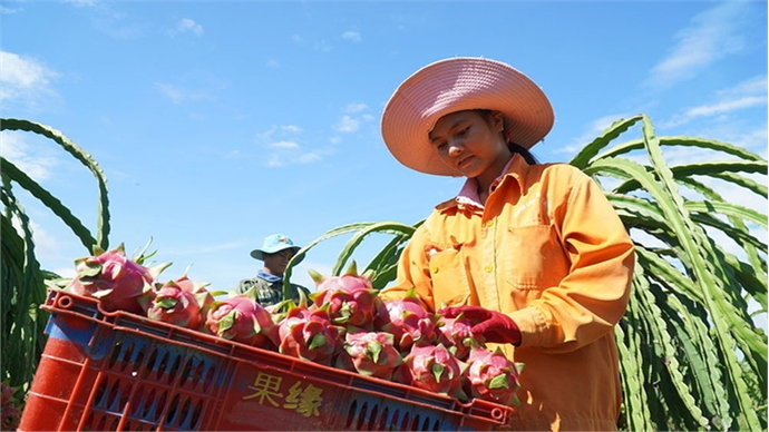 Fruit exports to South Korea surge