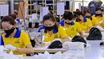 Vietnam remains magnet for EU investment despite Covid