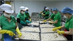 Vietnam holds great potential for exporting fruit and vegetables to EU